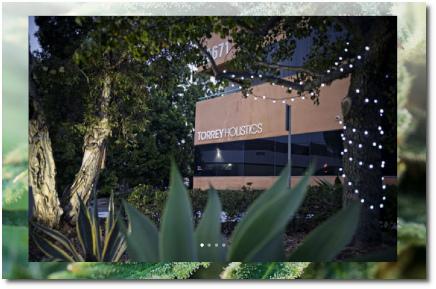 Torrey Holistics legal recreational cannabis in San Diego