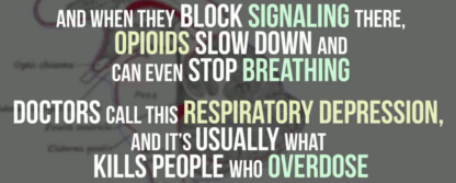 Opioids slow down and can even stop breathing (t=2:45)